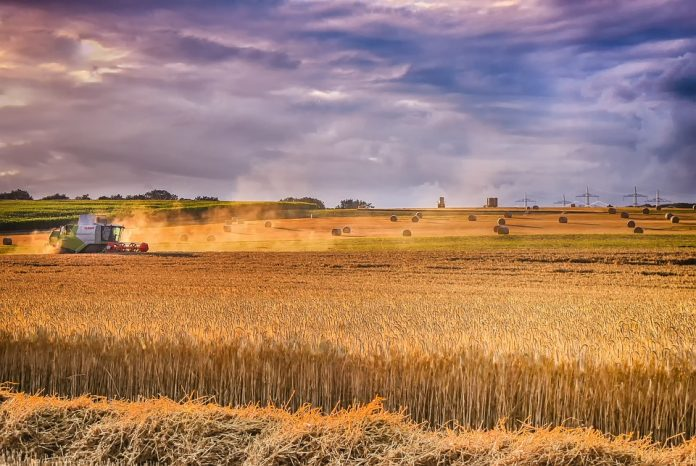 Salarii in agricultura in Spania