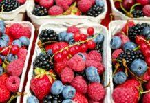 Locuri de muncă în Spania la cules de fructe FOTO:Couleur/Pixabay.com