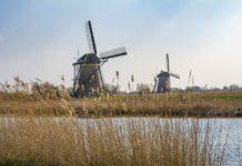 Locuri de muncă în Olanda pentru necalificați FOTO: ValdasMiskinis/Pixabay.com